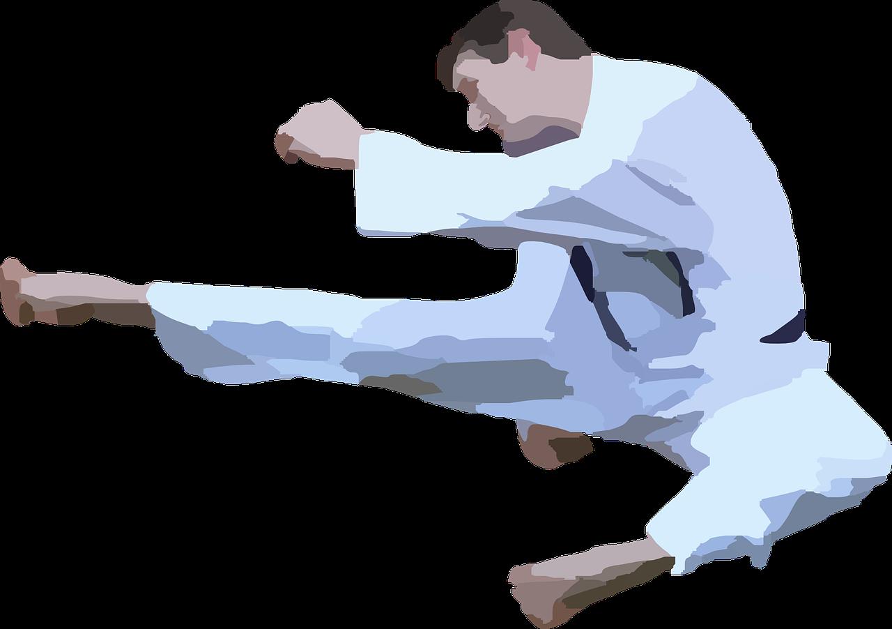 Actividades Extraescolares Deportivas. Judo, Karate, Taekwondo