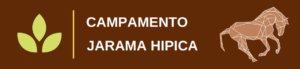 campamento hipica